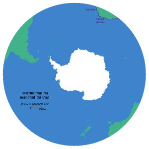 Carte de distribution du manchot du Cap