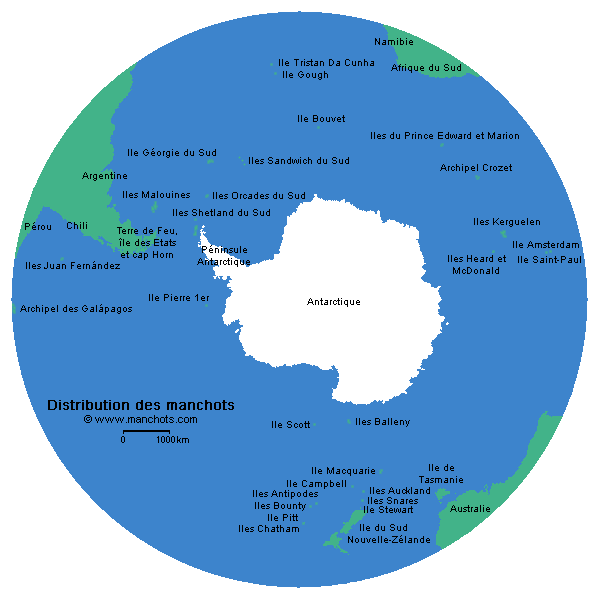 Répartition géographique des manchots